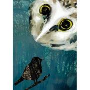 Eule & Vogel - Postkarte